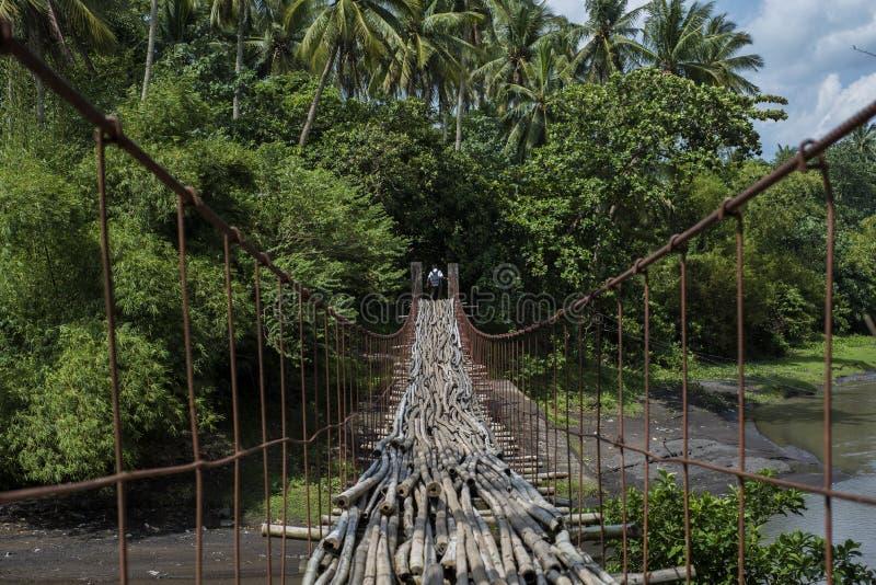 De schooljongen loopt op een opgeschorte bamboe gevloerde brug die tot de wildernis in Legazpi, Filippijnen leiden stock afbeeldingen