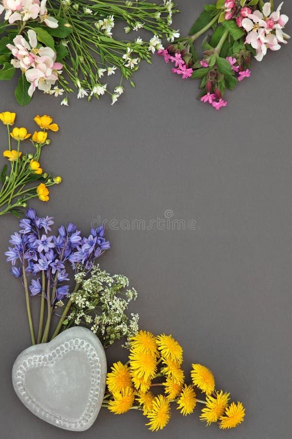 De Schoonheid van de de lentebloem royalty-vrije stock afbeeldingen