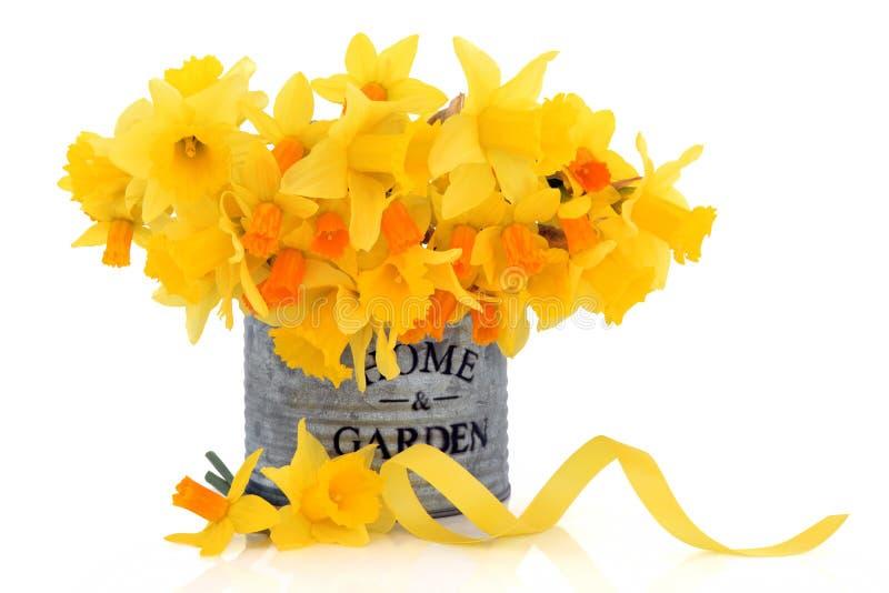 De Schoonheid van de lente stock foto's