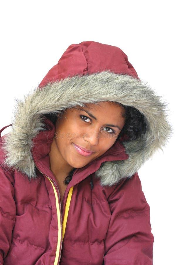 Download De Schoonheid Van De Winter Stock Foto - Afbeelding bestaande uit smiling, stunning: 295256