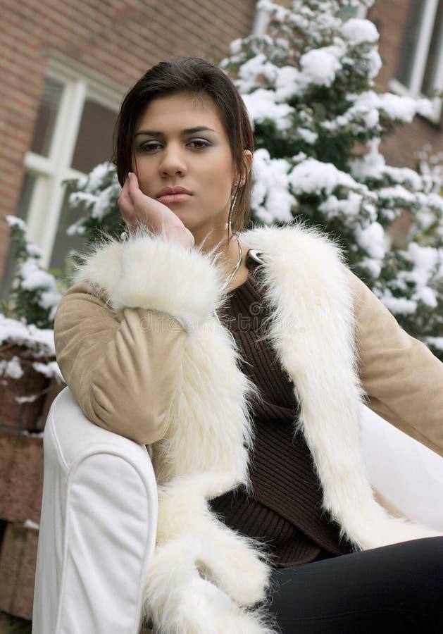 De Schoonheid van de winter royalty-vrije stock afbeelding