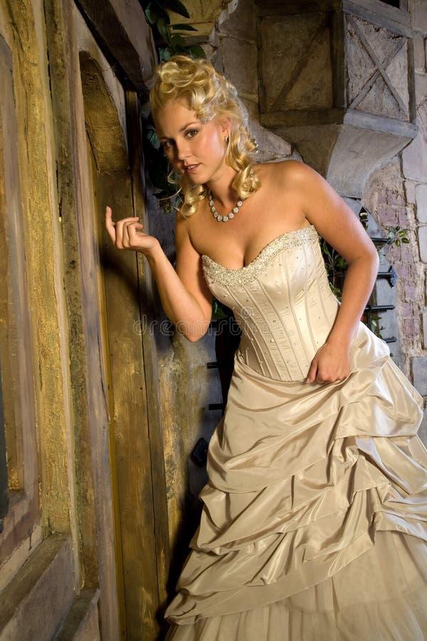 De schoonheid van Fairytale royalty-vrije stock afbeelding