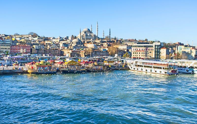 De schoonheid van Istanboel stock foto's