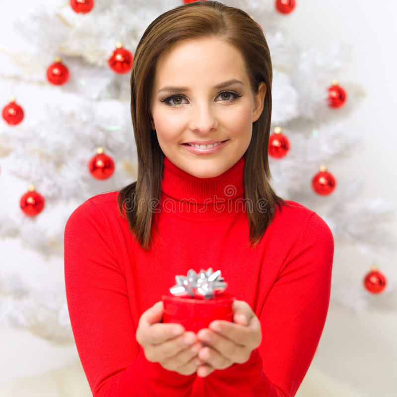 De Schoonheid van Kerstmis royalty-vrije stock foto's