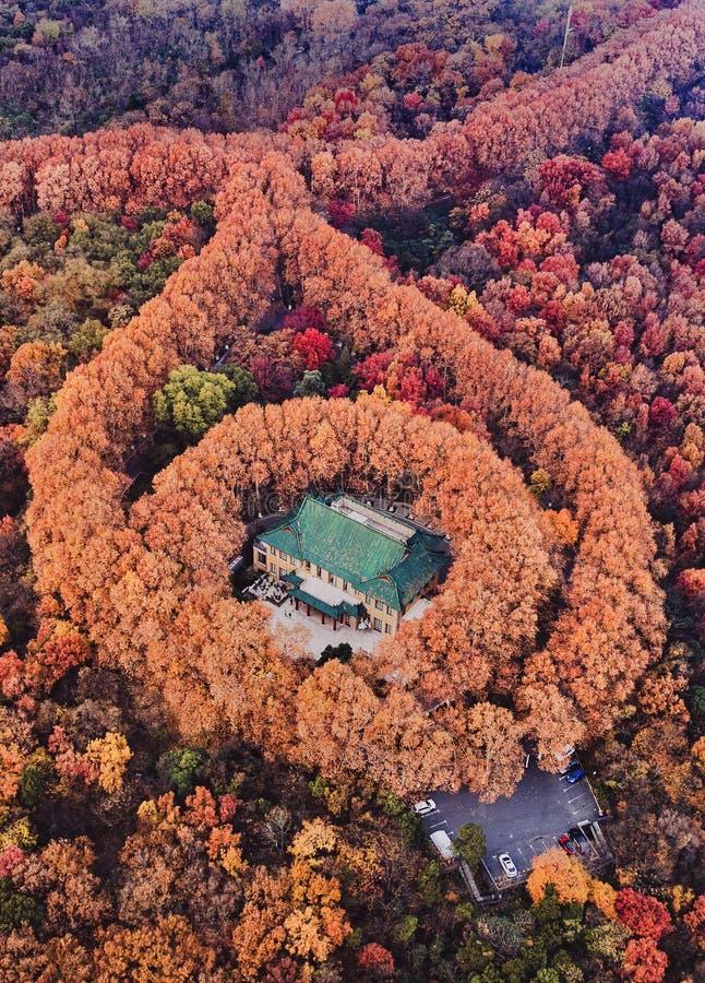 De schoonheid van de val van het paleis