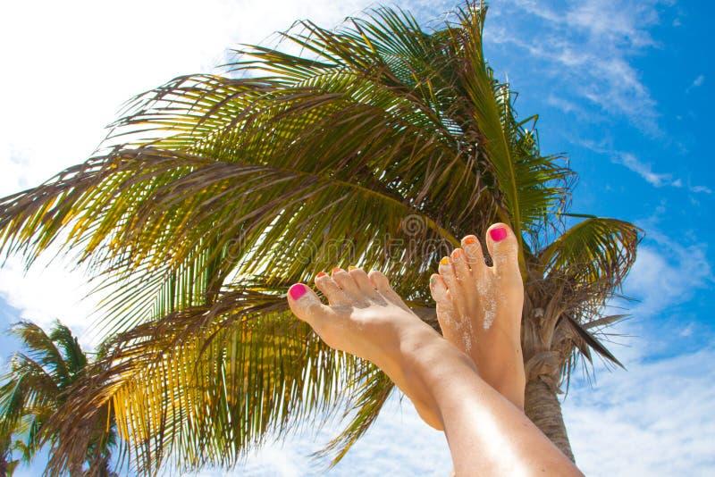 De schoonheidsbenen van de vrouw met manierpedicure bij strand stock fotografie