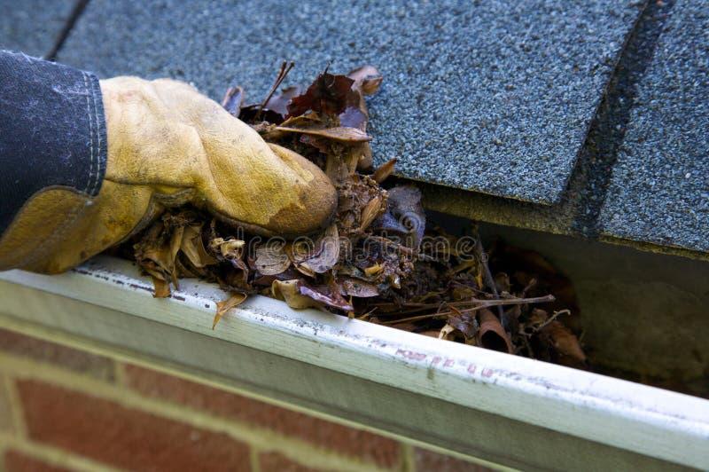De Schoonmaakbeurt van de daling - Bladeren in Goot stock afbeelding