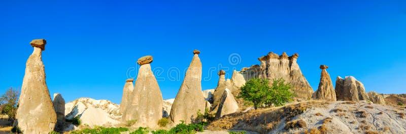 De schoorstenen van de fee in Cappadocia stock foto