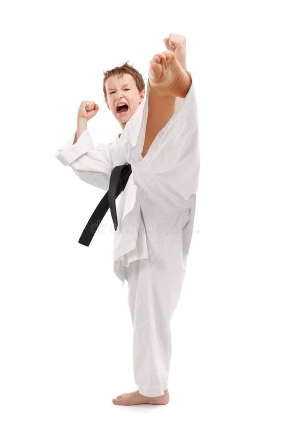 De Schop van de karate stock foto's