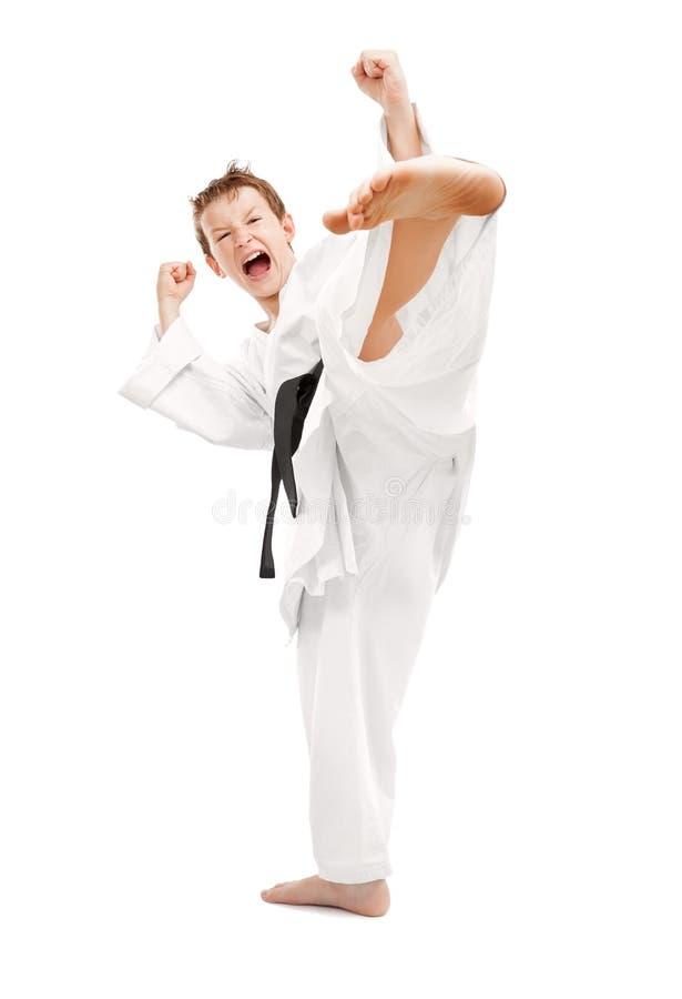De Schop van de karate stock afbeelding
