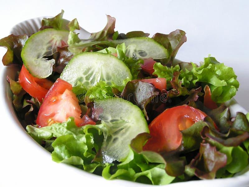 De Schotel van de salade royalty-vrije stock fotografie