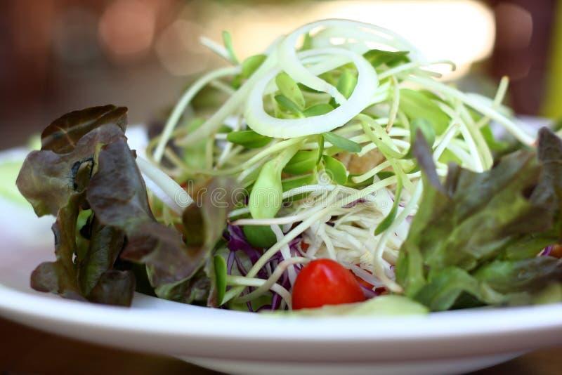 De schotel van de verse groentesalade stock afbeeldingen