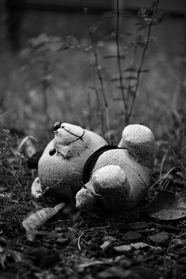 De schrik draagt klein zwart grijs stock fotografie
