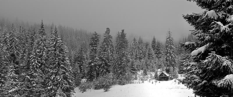 De schuilplaats van de sneeuw royalty-vrije stock foto