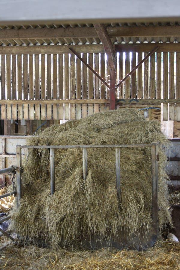 De Schuur van landbouwers royalty-vrije stock foto