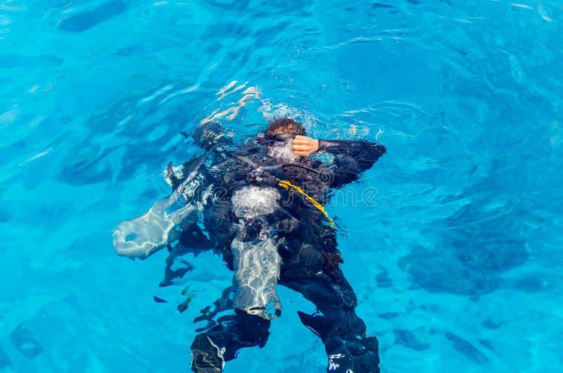 De scuba-duikers duiken in het duidelijke blauwe water in het overzees royalty-vrije stock afbeeldingen