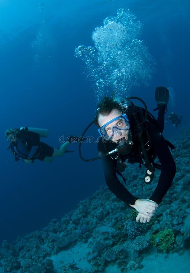 De scuba-duikers genieten van een grote duikvlucht op koraalrif stock afbeeldingen