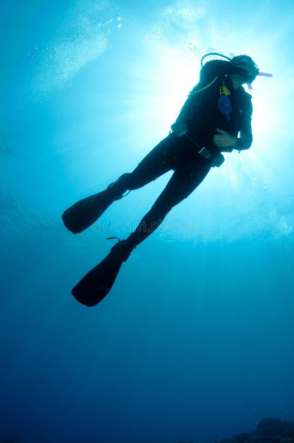 De scuba-duikers van Sihlouetted stock afbeelding