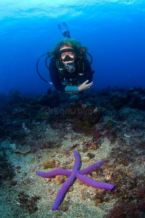 De scuba-uitrusting-duiker die van de vrouw over seastar zwemt royalty-vrije stock fotografie