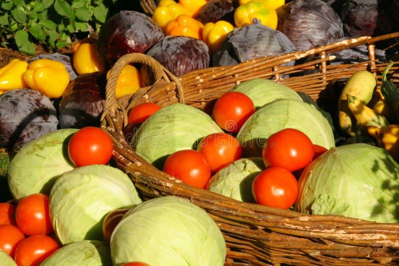De seizoengebonden groente van het landbouwbedrijf stock afbeelding