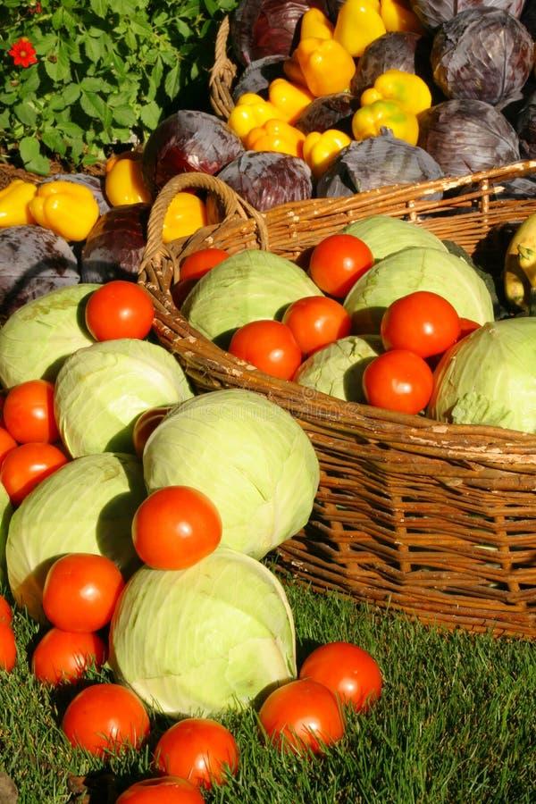 De seizoengebonden groente van het landbouwbedrijf royalty-vrije stock fotografie