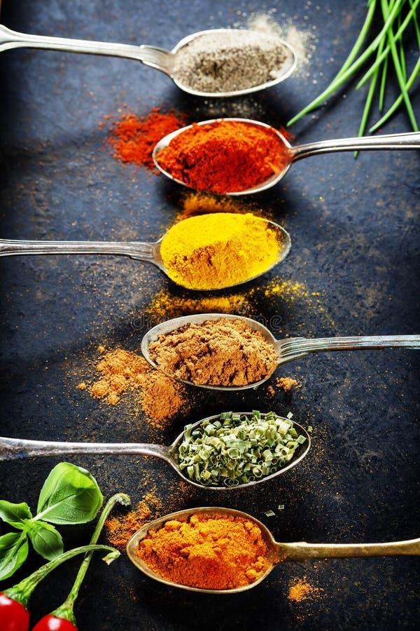 De selectie van kruiden en van kruiden stock afbeelding