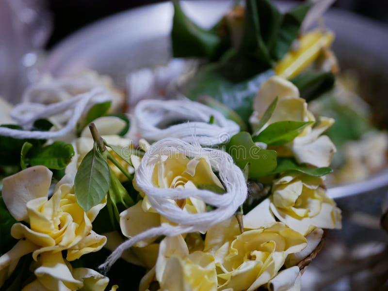 De selectieve nadruk van de bloemen Dok van de Kaapjasmijn zette met de heilige witte zonde van draadsai voor Rod Nam Dam Hua-cer royalty-vrije stock foto