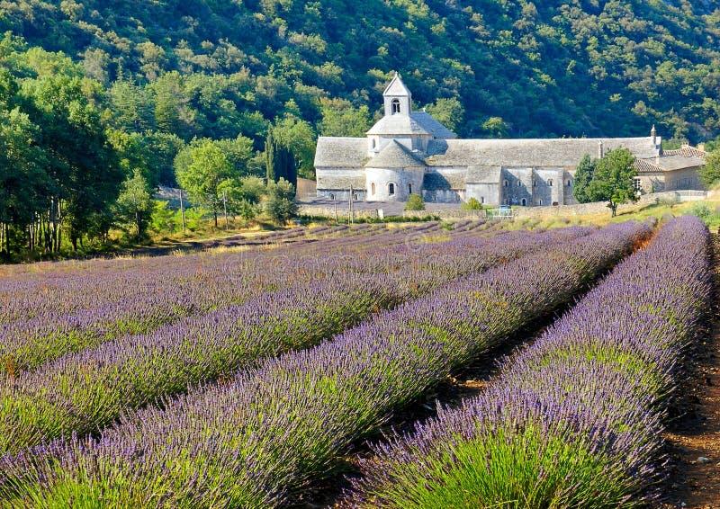 De Senanque abbaye zdjęcie royalty free