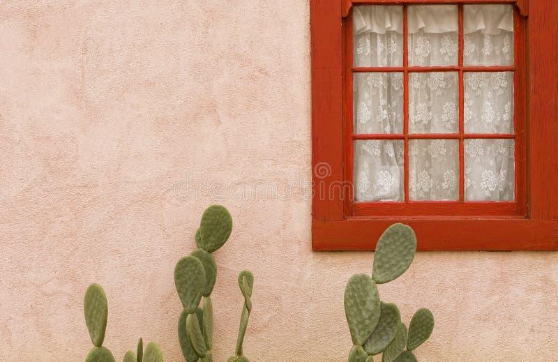 De Serenade van de cactus royalty-vrije stock foto