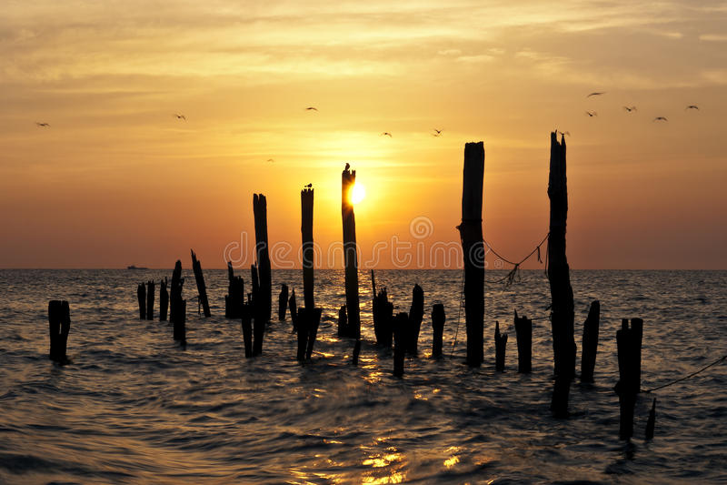 De Serenade van de zonsopgang royalty-vrije stock foto