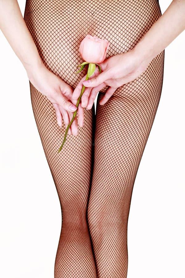 De sexy netto kousen met namen toe royalty-vrije stock foto's