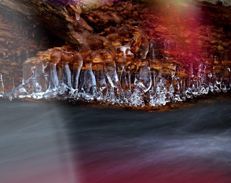 De Shinningsijskegels hangen op gevallen boomstam boven melkachtig water stock foto's