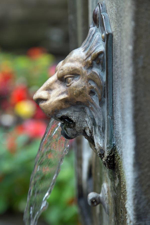 De sierfontein die van het Leeuwwater drinkwater verstrekken royalty-vrije stock afbeeldingen