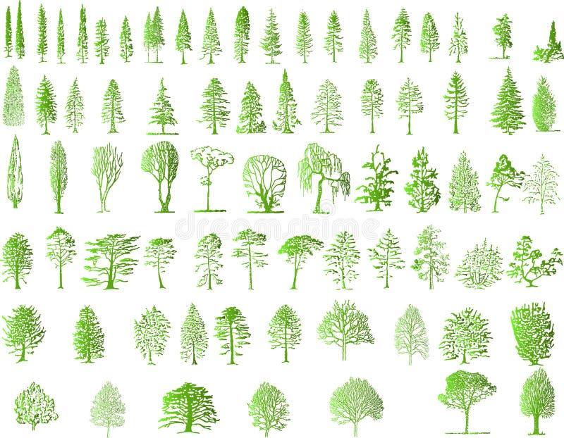 De silhouetten van de boom vector illustratie
