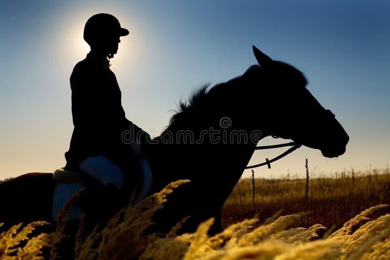 De silhouetten van de jockey en van het paard royalty-vrije stock fotografie