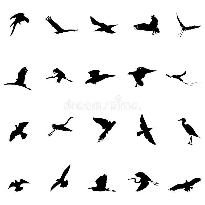 De silhouetten van vogels stock illustratie