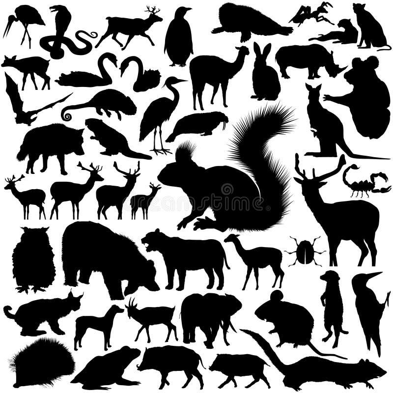 De Silhouetten van wilde dieren vector illustratie