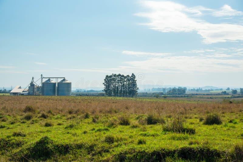 De silo van de korrelopslag en landelijk landschap stock afbeelding