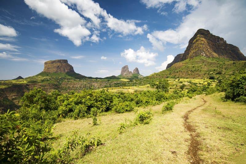 De Simien bergen, Etiopien royaltyfri bild