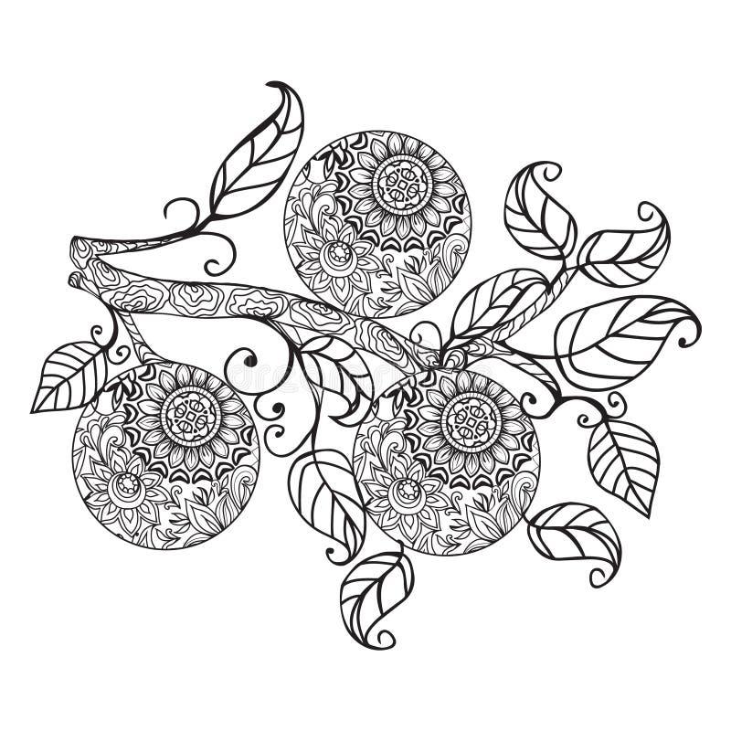 De sinaasappel en de bladeren overhandigen getrokken in zwart-wit overzicht vector illustratie