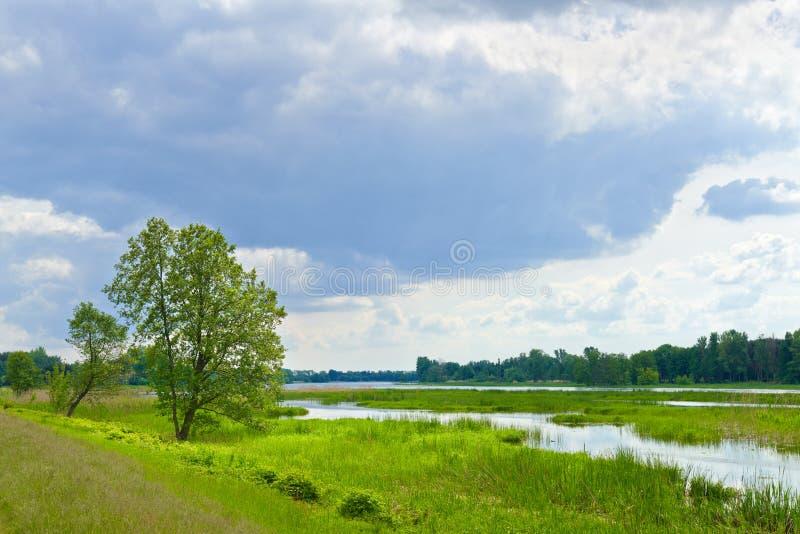 De sista lösa ställena. Flodvatten av den Narew floden. arkivbilder