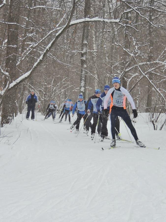 De skiërs doen de race stock foto