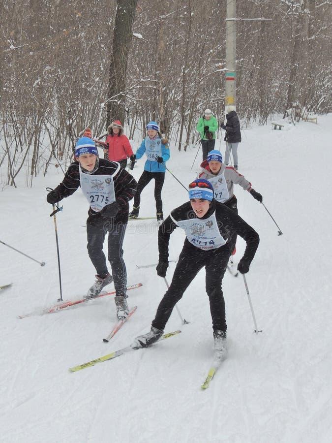 De skiërs op de ski rennen royalty-vrije stock fotografie