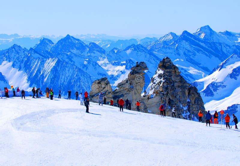 De skiërs op hoge berg hellen royalty-vrije stock foto's