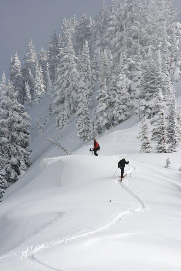 De skiërs van Backcountry stock foto
