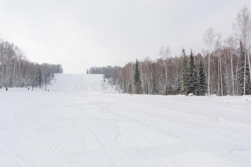 De skihelling Skihelling in het bos Mooie de winterbos in taiga Bomen onder de sneeuw Spoor voor skiërs royalty-vrije stock foto