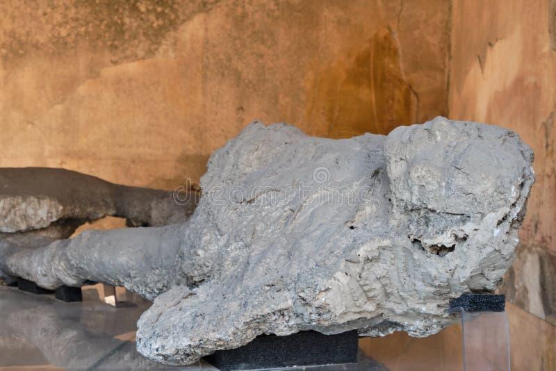 De slachtoffers van Pompei omvat door vulkanische as stock foto