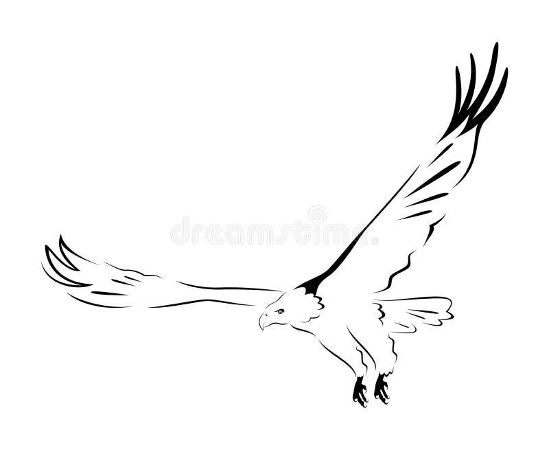 De slagen van de adelaar royalty-vrije illustratie