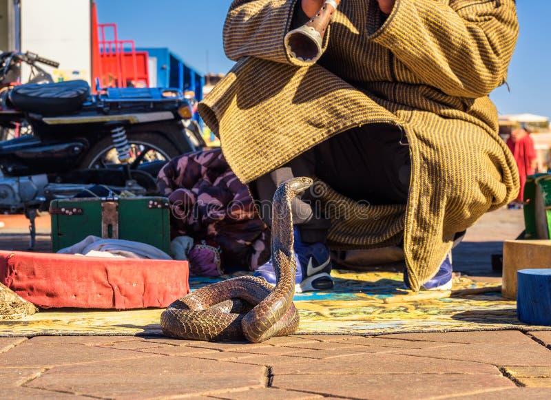 De slangenbezweerder speelt muziek voor zijn cobra bij het vierkant van Jemaa Gr-Fnaa in Marrakech stock fotografie