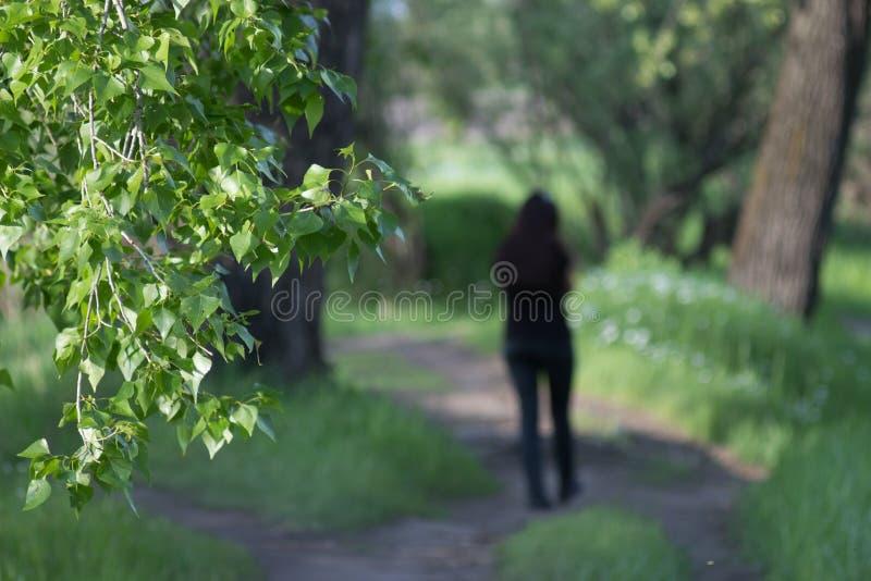 De sleep, vaag silhouet gaat, groene bladeren weg royalty-vrije stock afbeelding